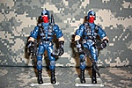 Cobra Security Troops