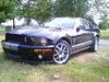 07GT500 COBRA's Avatar