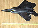 1/18 F-22 Raptor for Gi Joe-p1010317.jpg