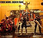 I Present Cobra Black Flag !-2.jpg