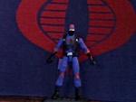 Custom ninja viper-0807081657.jpg