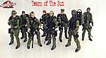 Navy SEAL Recon Team-project-tearsofthesun002.jpg