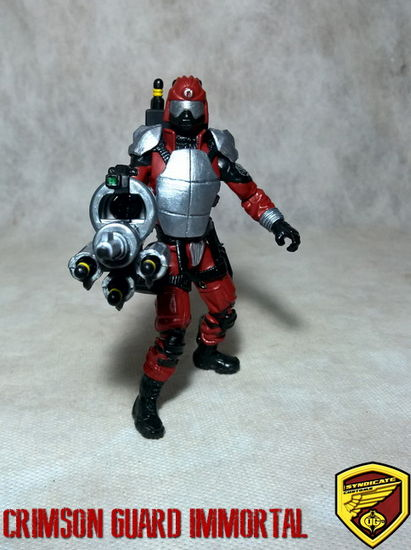 Crimson Guard Immortal custom-cgi-001.jpg