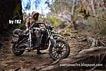 -bike_zartan000.jpg
