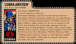 Custom Cobra Filecards-cobra-aircrew-filecard.jpg