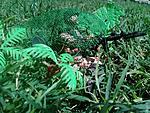 Ambush 1990-img-20190303-wa0093.jpg