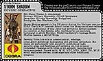 25th Strike Team Storm Shadow-storm-shadows-file-card.jpg