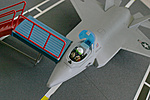 F-35 JSF (Joint Strike Fighter) Customs-jsf5.jpg