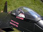 Custom Modern Era Night Raptor XP-22F-acecockpit.jpg