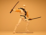 More Ninja-storm-shadow3.jpg