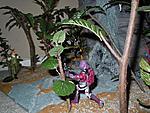 Cobra island waterfall dio, jungle, rock with tons of cobra island sets-63261_181250941893703_100000263952789_579615_4762647_n.jpg