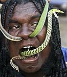 Official Cobra Command Recruitment Thread!!!!-crazy-snake-man.jpg