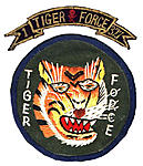 What was the point of Tiger Force?-story.jpg