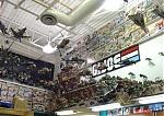 G.I. Joe Collection Of The Month-gi-joe-collection3.jpg