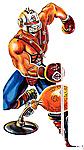 G.I. Joe Most Wanted Figures In 2009-cobra-trainer-big-boa.jpg