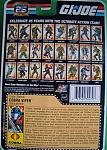G.I. Joe 25th Anniversary Wave 7 File Card Images-cobra-viper-file-card-2.jpg