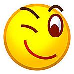 North Carolina G.I. Joe Sightings-emoticonblog.jpg