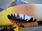 Tiger Force Tiger Rat Review-ratmouthrightcrease.jpg
