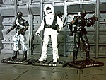 GI Joe Rise of Cobra:SnakeEyes Arctic Assault-082920093593.jpg