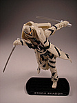 ROC Wave 5 Arctic Threat Storm Shadow Review-as7.jpg