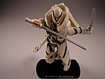 ROC Wave 5 Arctic Threat Storm Shadow Review-as8.jpg