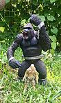 GI Joe vs. McFarlane King Kong???-34041140793_7a3674657d_o.jpg