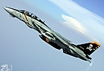 Would you rather have a NEW F-14 RAH Skystriker or YF-23  Resolute Skystriker?-f14-photo-vf103-21l.jpg