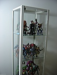 Displays and Display Cases!! Lets see yours!!-biby.jpg