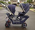 What Car Do You Drive?-stroller1.jpg