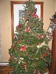 Post ur x-mas tree's-tree2.jpg