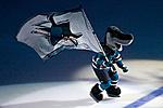 NHL thread-800px-sharkie_with_flag.jpg