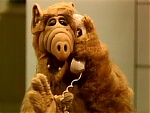 Favorite T.V. Shows-alf.jpg